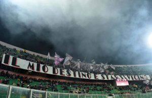 Stellone Palermo