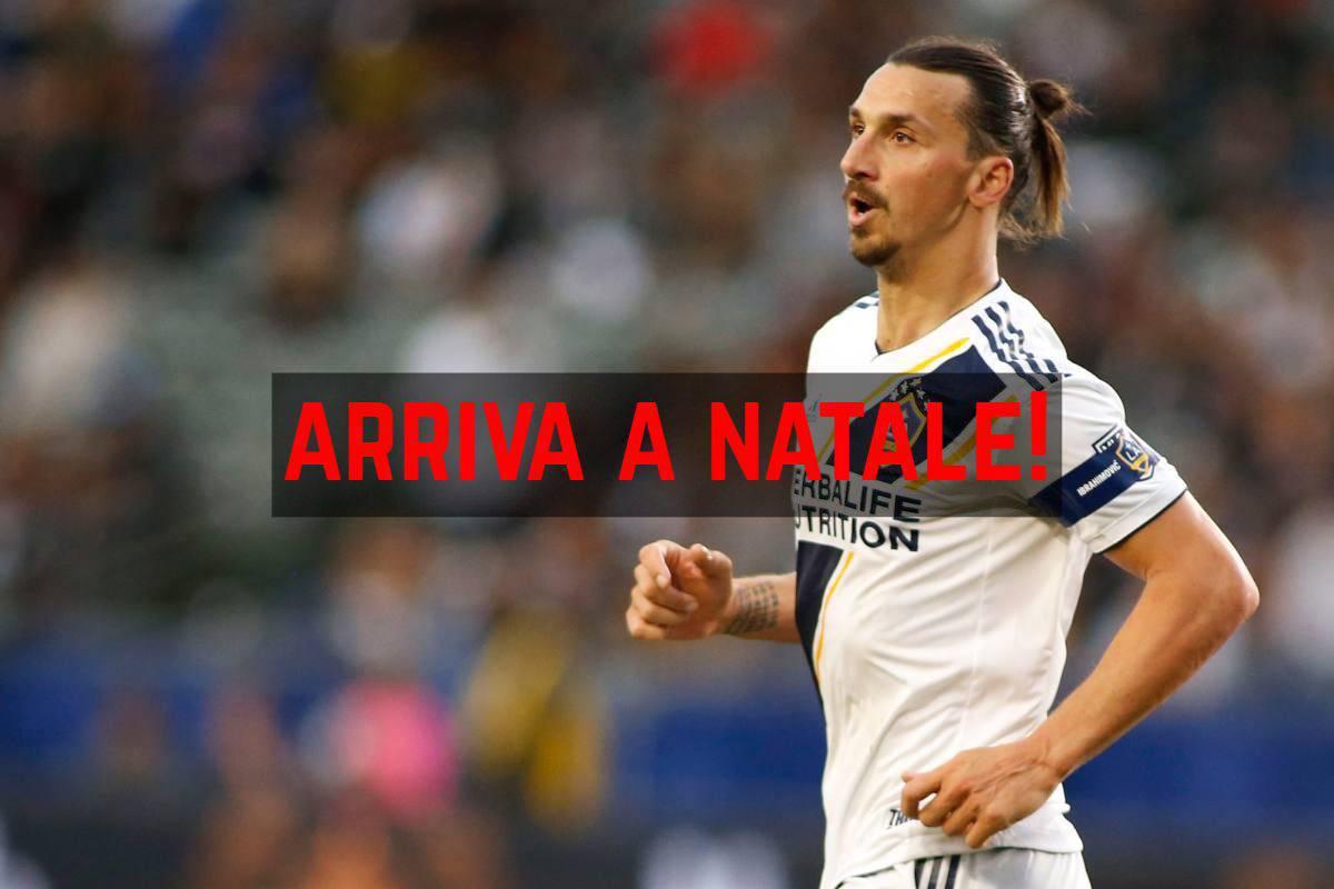 Ibrahimovic Serie A