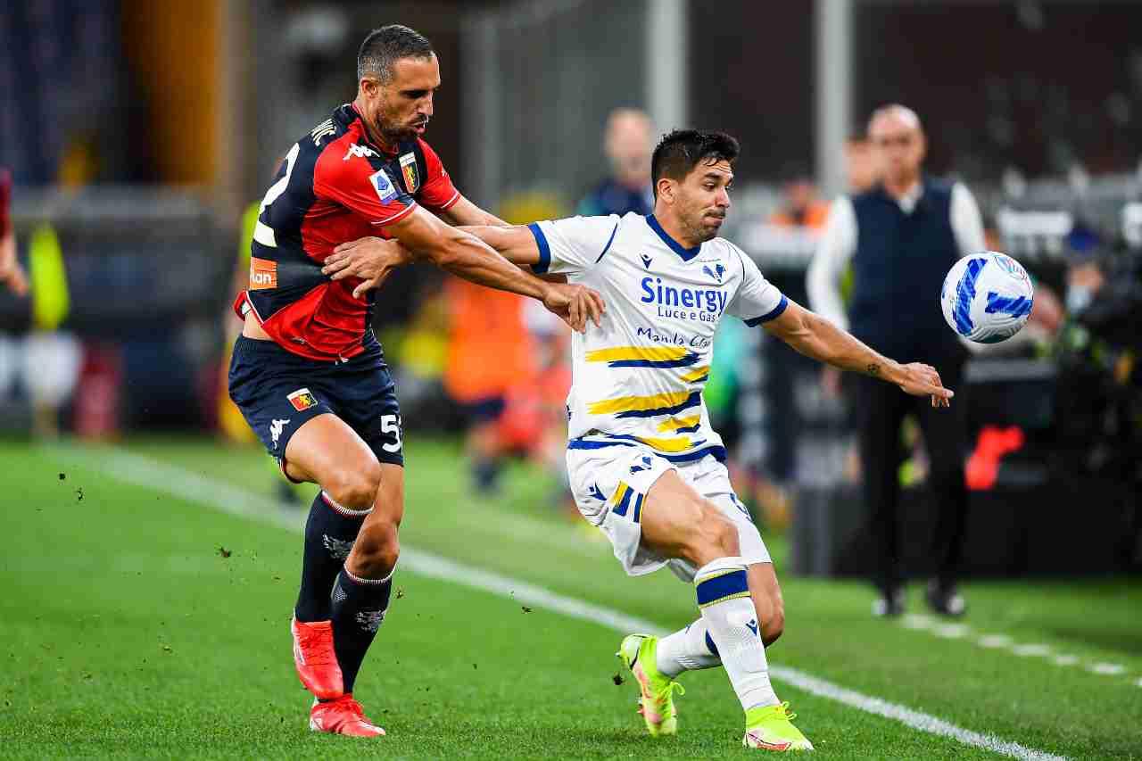 Genoa-Verona voti